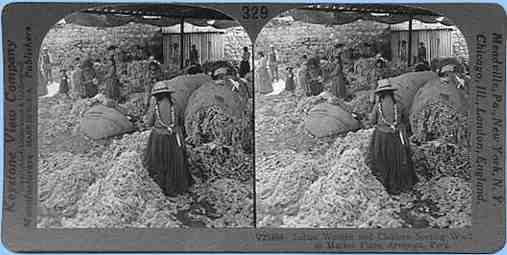 Stereoview picture of sorting llama wool in Peru