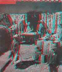 Anaglyph picture of vicuna rugs in Bolivia